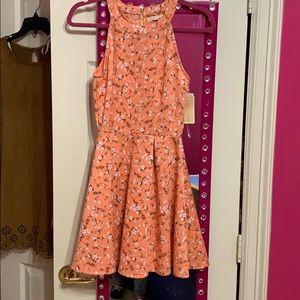 Cute summer/spring brand new dress